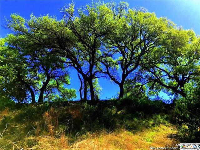 273 Sweet Clover Dr, Spring Branch, TX 78070 (MLS #1420928) :: Tom White Group