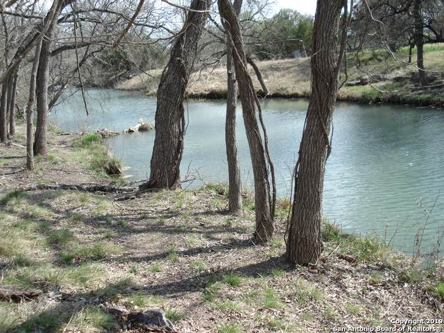 427 Rittimann Rd, Spring Branch, TX 78070 (MLS #1420931) :: Santos and Sandberg