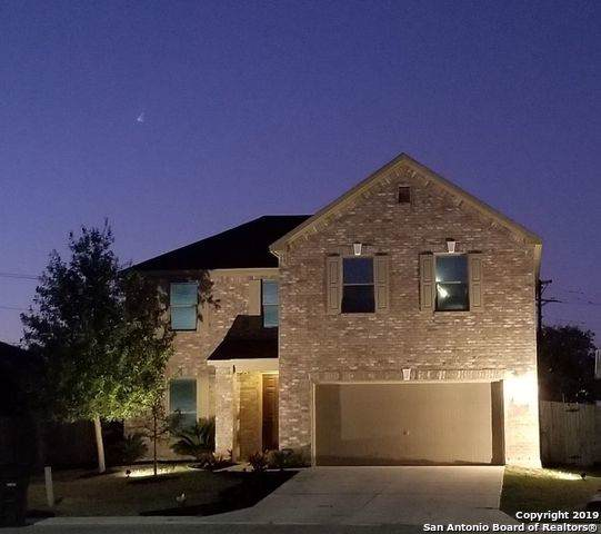 335 Joshua Hill, New Braunfels, TX 78130 (#1420978) :: The Perry Henderson Group at Berkshire Hathaway Texas Realty