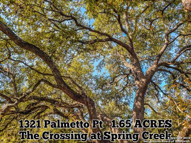 1321 Palmetto Pt, Spring Branch, TX 78070 (#1420994) :: The Perry Henderson Group at Berkshire Hathaway Texas Realty