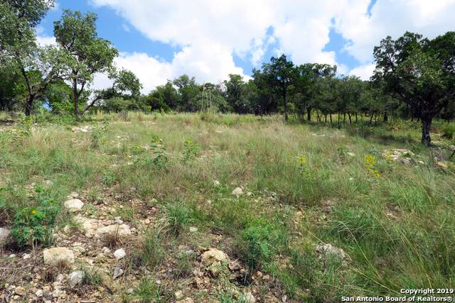 20414 Bobwhite Run, San Antonio, TX 78256 (MLS #1421002) :: Vivid Realty