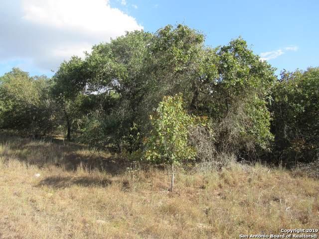 710 Cherry Ridge, Floresville, TX 78114 (MLS #1421208) :: Alexis Weigand Real Estate Group