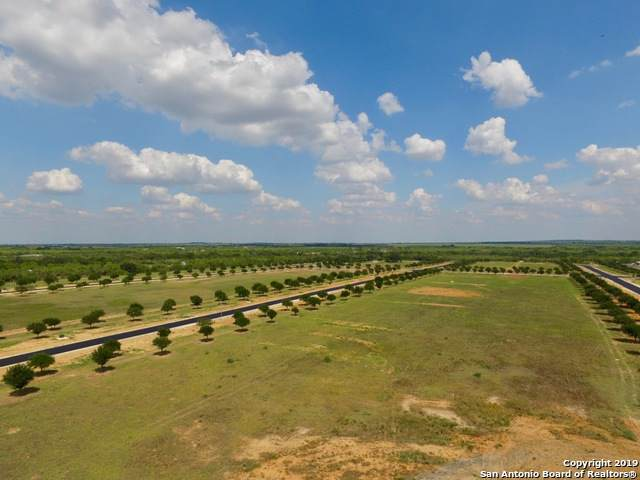 LOT 14 Tree Farm Drive, Lytle, TX 78052 (MLS #1421317) :: Alexis Weigand Real Estate Group