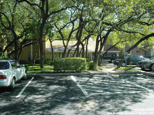 8002 West Ave, Castle Hills, TX 78213 (MLS #1421382) :: Vivid Realty