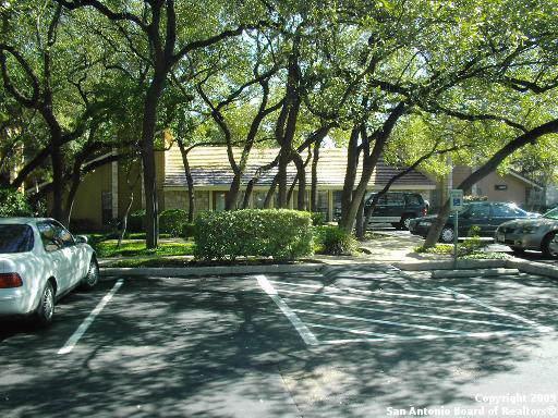 8002 West Ave, Castle Hills, TX 78213 (MLS #1421382) :: Kate Souers