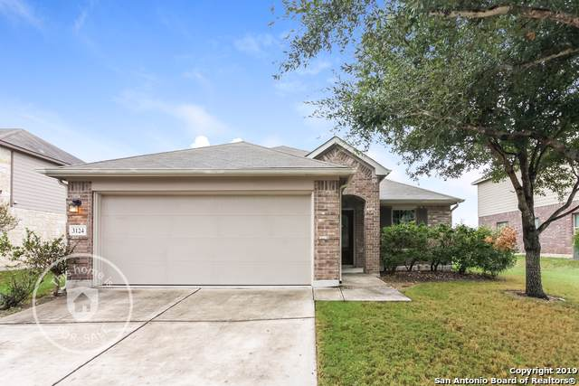 3124 Muntjac, Schertz, TX 78154 (#1421391) :: The Perry Henderson Group at Berkshire Hathaway Texas Realty