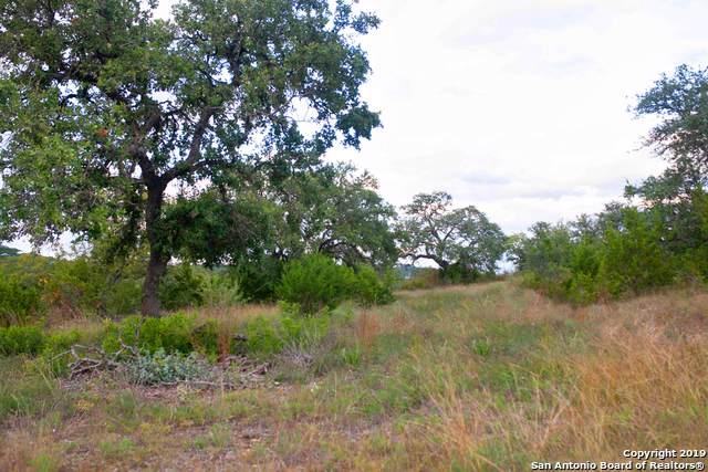 10123 Kendall Canyon, San Antonio, TX 78255 (MLS #1421476) :: The Gradiz Group