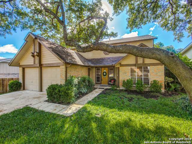 8706 Collingwood, Universal City, TX 78148 (MLS #1421492) :: The Gradiz Group