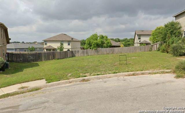 6719 Ambergris Cv, San Antonio, TX 78223 (#1421521) :: The Perry Henderson Group at Berkshire Hathaway Texas Realty