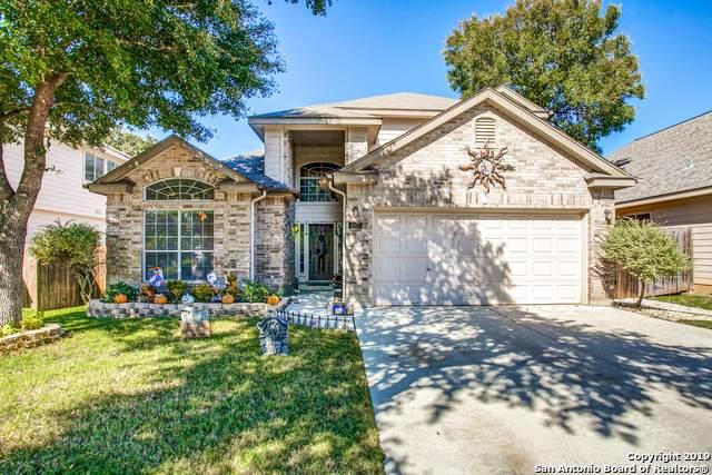4807 Osborn Glade, San Antonio, TX 78247 (#1421738) :: The Perry Henderson Group at Berkshire Hathaway Texas Realty