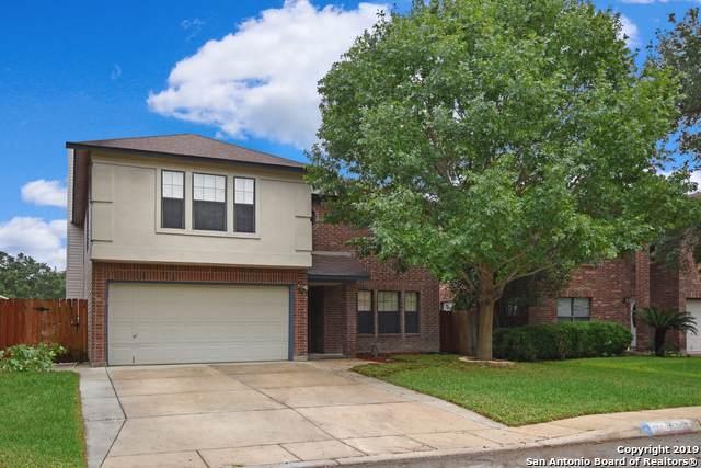 502 Terra Cotta, San Antonio, TX 78253 (MLS #1421944) :: BHGRE HomeCity