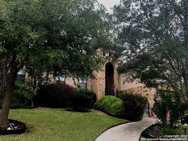 3007 Spider Lily, San Antonio, TX 78258 (#1421954) :: The Perry Henderson Group at Berkshire Hathaway Texas Realty
