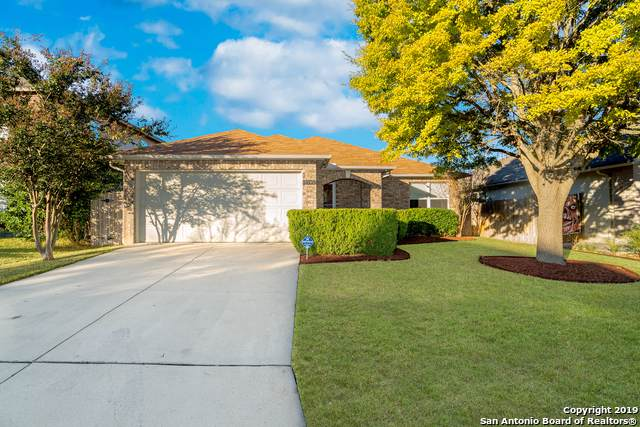 10539 Weathering Run, San Antonio, TX 78254 (MLS #1421975) :: The Gradiz Group