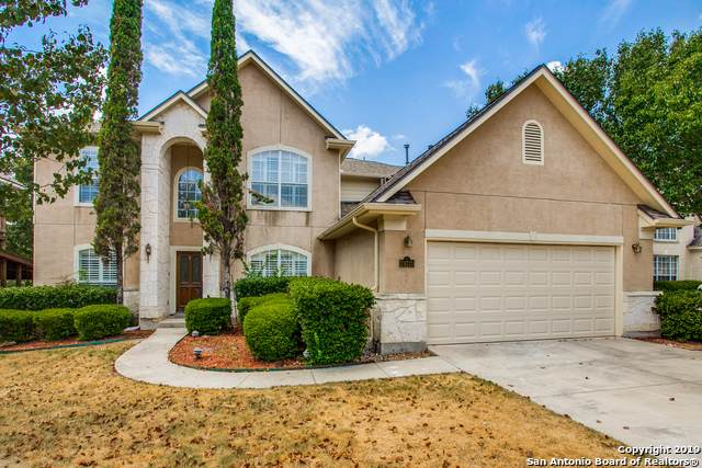 24215 Bear Mtn, San Antonio, TX 78258 (MLS #1422218) :: Alexis Weigand Real Estate Group