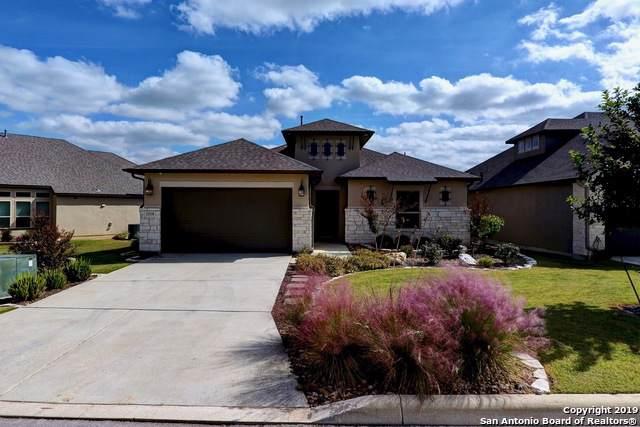 22938 Canasta, San Antonio, TX 78261 (#1422296) :: The Perry Henderson Group at Berkshire Hathaway Texas Realty