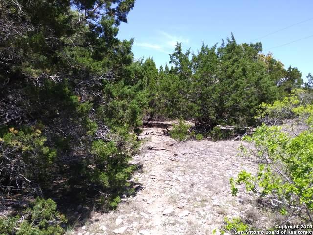 212 Circle Haven, Canyon Lake, TX 78133 (#1422405) :: The Perry Henderson Group at Berkshire Hathaway Texas Realty