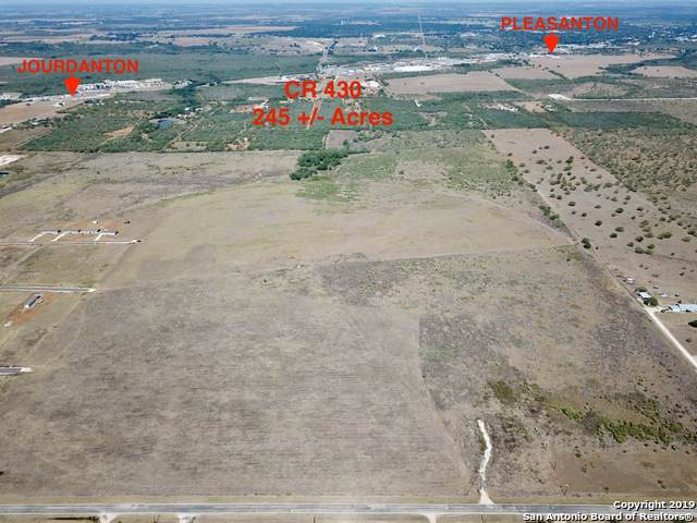 2155 County Road 430, Pleasanton, TX 78064 (MLS #1422409) :: Glover Homes & Land Group