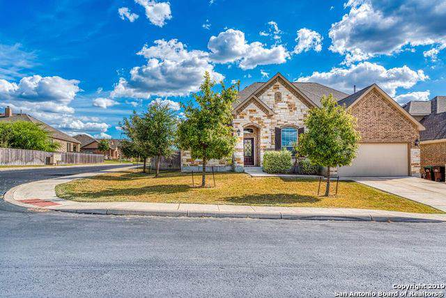 12902 Gypsophila, San Antonio, TX 78253 (#1422687) :: The Perry Henderson Group at Berkshire Hathaway Texas Realty