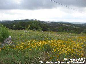 LOT 372 Cr 2757, Mico, TX 78056 (MLS #1422788) :: Alexis Weigand Real Estate Group
