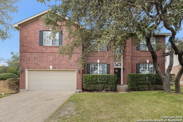 20703 Wild Springs Dr, San Antonio, TX 78258 (#1422951) :: The Perry Henderson Group at Berkshire Hathaway Texas Realty