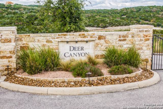 22311 White Doe Pass, San Antonio, TX 78255 (MLS #1422962) :: The Gradiz Group