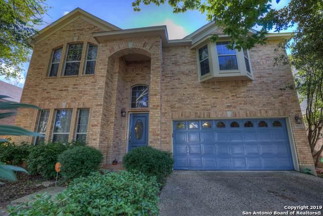 9102 Maggie Ct, San Antonio, TX 78240 (MLS #1422982) :: BHGRE HomeCity