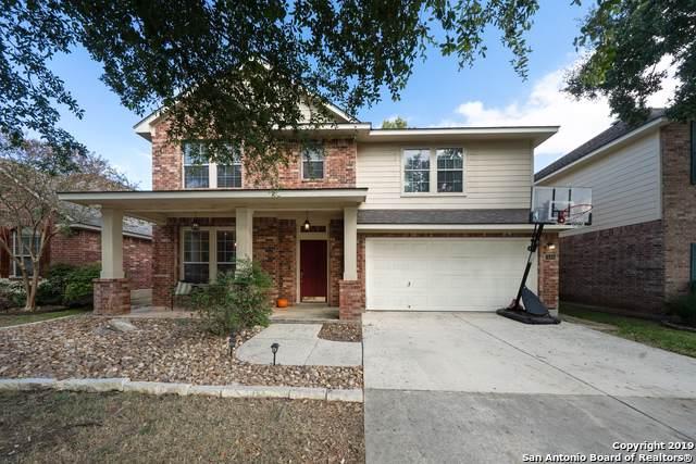 24414 Flint Creek, San Antonio, TX 78255 (MLS #1423036) :: The Castillo Group