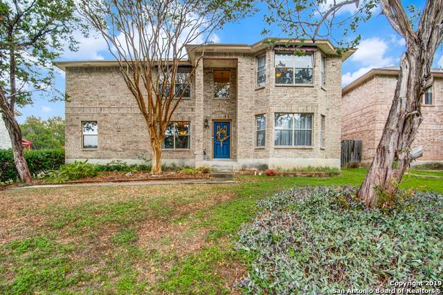 3438 Pecan Gap, San Antonio, TX 78247 (MLS #1423067) :: Alexis Weigand Real Estate Group