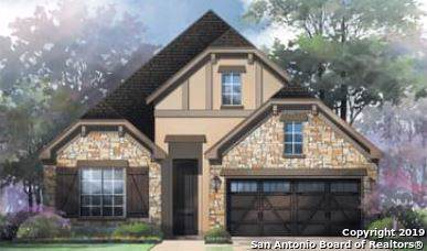 28845 Bluebottle, San Antonio, TX 78260 (MLS #1423079) :: Alexis Weigand Real Estate Group