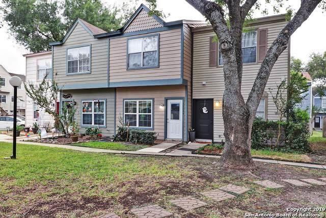 12244 Lemon Blossom, San Antonio, TX 78247 (MLS #1423186) :: Alexis Weigand Real Estate Group