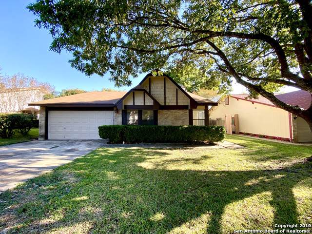 9830 Spruce Ridge Dr, Converse, TX 78109 (#1423251) :: The Perry Henderson Group at Berkshire Hathaway Texas Realty
