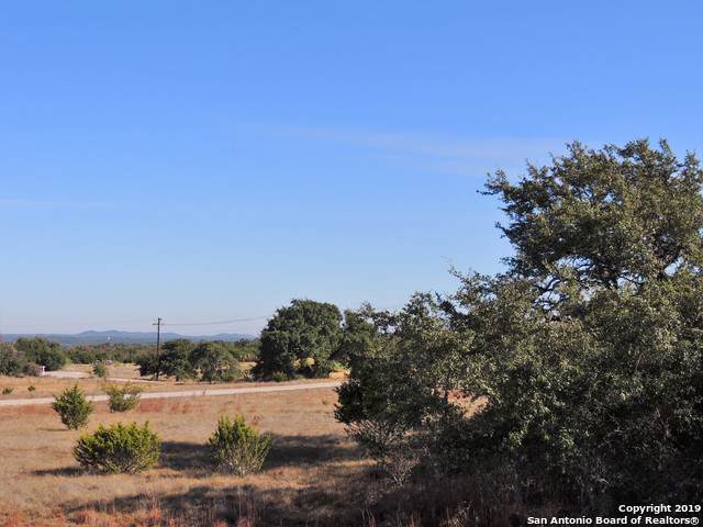 LOT 979 David Gage Ct, Blanco, TX 78606 (MLS #1423257) :: Alexis Weigand Real Estate Group