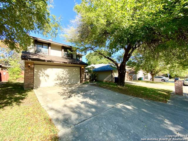 5743 Spring Moon St, San Antonio, TX 78247 (MLS #1423258) :: Alexis Weigand Real Estate Group