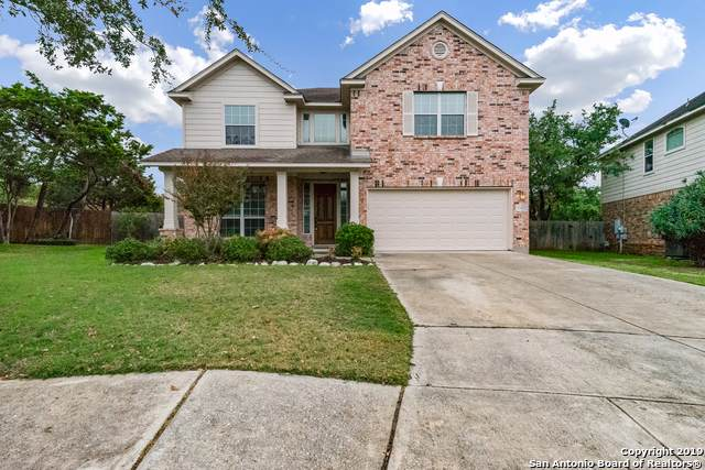 25812 Stone Canyon, San Antonio, TX 78260 (MLS #1423285) :: Alexis Weigand Real Estate Group