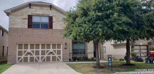 13206 Piper Sonoma, San Antonio, TX 78253 (MLS #1423405) :: Exquisite Properties, LLC