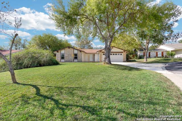 14407 Briarfern St, San Antonio, TX 78247 (MLS #1423566) :: Niemeyer & Associates, REALTORS®