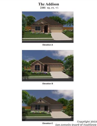 4664 Grey Sotol Way, Schertz, TX 78108 (MLS #1423569) :: Tom White Group