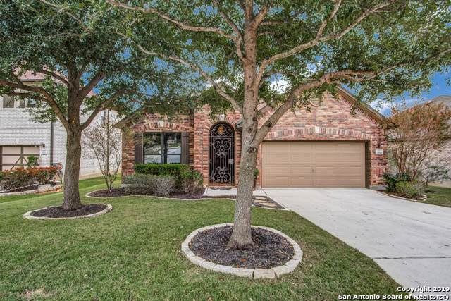 20918 Creek River, San Antonio, TX 78259 (#1423600) :: The Perry Henderson Group at Berkshire Hathaway Texas Realty