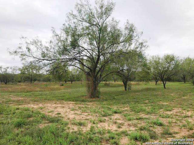 106 Cr 2672, Devine, TX 78016 (MLS #1423643) :: Reyes Signature Properties