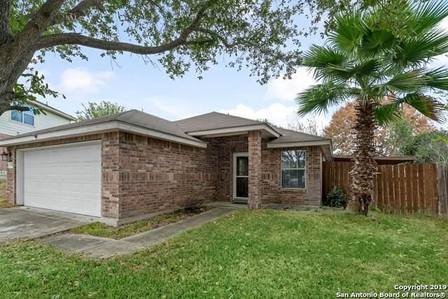 7002 Palacios Cove, San Antonio, TX 78242 (MLS #1423664) :: NewHomePrograms.com LLC