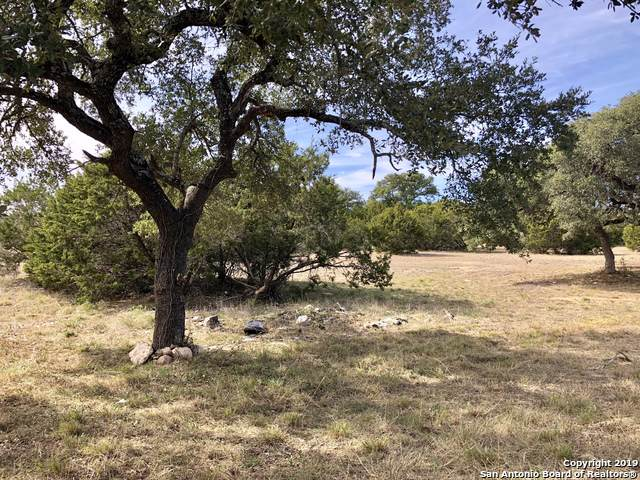 325 Lets Roll Dr, Fischer, TX 78623 (MLS #1423704) :: EXP Realty