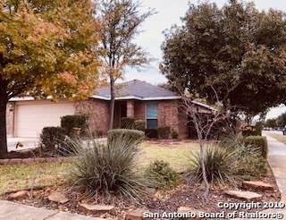 9606 Shetland Ct, San Antonio, TX 78254 (MLS #1423893) :: Tom White Group