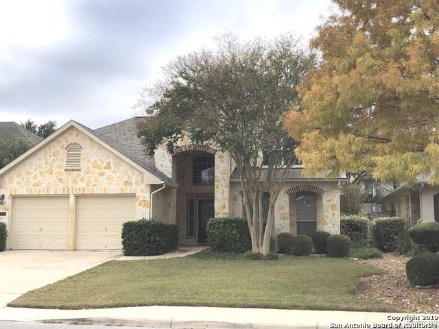203 Aster Trail, San Antonio, TX 78256 (#1423990) :: The Perry Henderson Group at Berkshire Hathaway Texas Realty