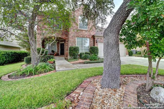 18903 Brookwood Forest, San Antonio, TX 78258 (#1424071) :: The Perry Henderson Group at Berkshire Hathaway Texas Realty