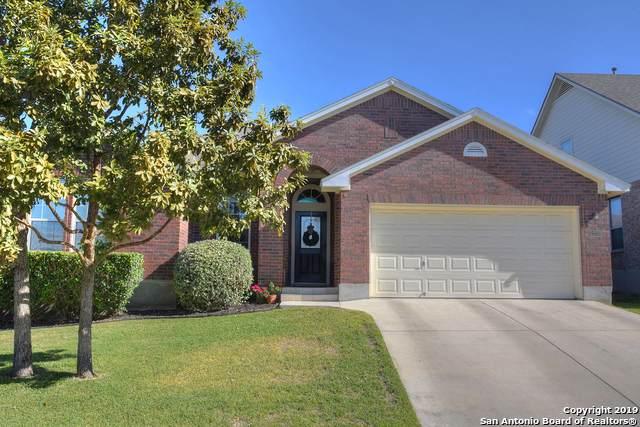 21103 Pedregoso Ln, San Antonio, TX 78258 (MLS #1424091) :: Alexis Weigand Real Estate Group