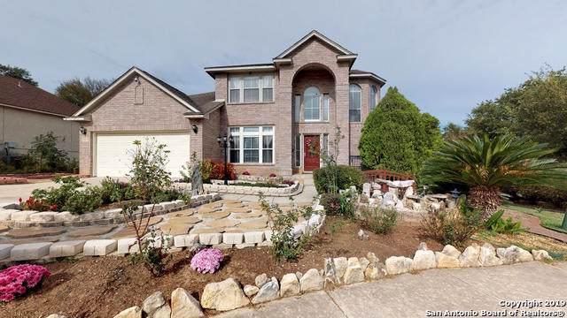 13619 Mesa Point Dr, San Antonio, TX 78232 (MLS #1424148) :: Reyes Signature Properties