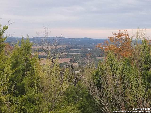 LOT 25 W High Bluff Cir, Boerne, TX 78006 (MLS #1424205) :: Carolina Garcia Real Estate Group