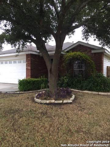 211 Starling Creek, New Braunfels, TX 78130 (MLS #1424257) :: BHGRE HomeCity