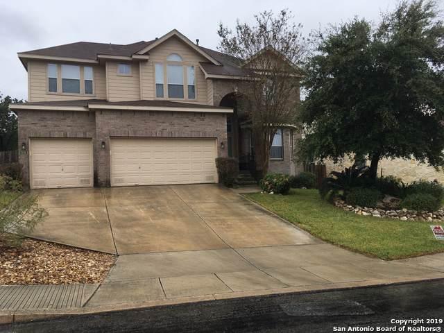326 Neches Branch, San Antonio, TX 78258 (MLS #1424276) :: Alexis Weigand Real Estate Group