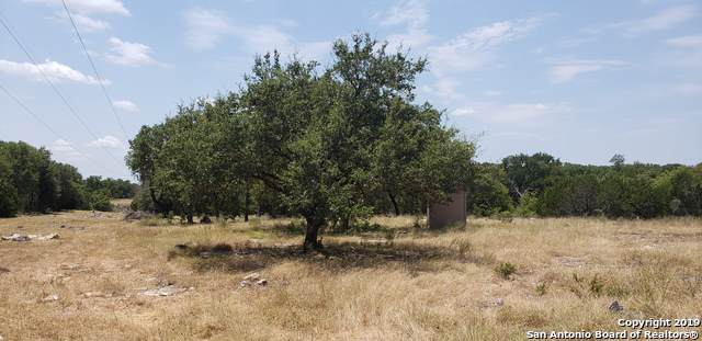 LOT 8 Falling Leaves Ct, Spring Branch, TX 78070 (MLS #1424348) :: Tom White Group